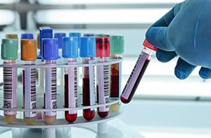 Ganzheitliche Labordiagnostik